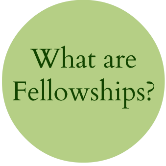 What are Fellowships?